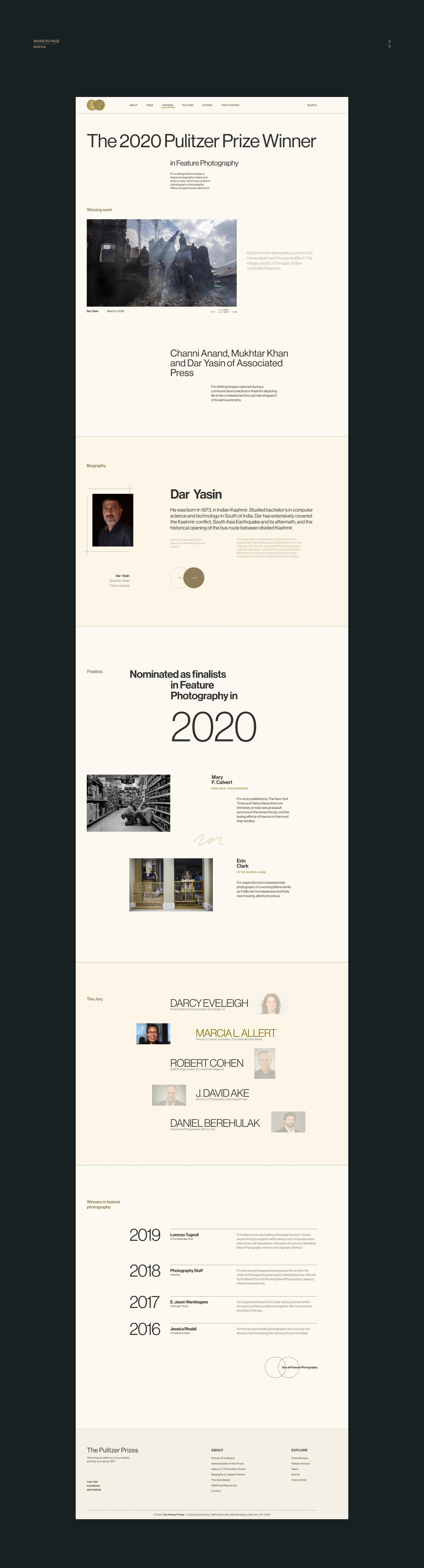 Пулитцер дизайн сайта концепт